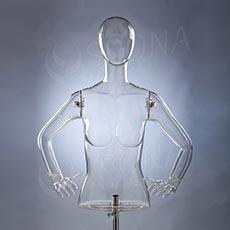 Torzo dámske s rukami a hlavou EKO 01, transparentné